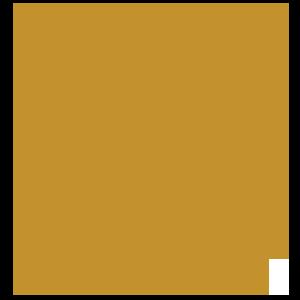 logo_berne